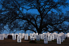 Chattanooga National Memorial Cemetary (Pheno Me Non) Tags: trees usa halloween chattanooga silhouette night photoshop dark nikon nocturnal unitedstates tennessee cemetary tombstone veterans d90 chattanoogamemorialcemetary