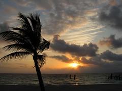 Wake Up Call (zoniedude1) Tags: ocean morning travel sky sun beach nature beautiful silhouette clouds sunrise mexico dawn coast yucatan playa atlantic adventure explore amanecer exotic palmtree bonita tropical caribbean rays exploration mayanriviera marcaribe quintanaroo puertomorelos buenosdias salidadelsol canonpowershota720is zoniedude1 amomxico mxicohermoso yucatan2010 plma2010