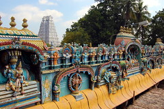 (the_gman) Tags: india temple 2010 trichy srirangam gopuram gopurams srirangaswamy