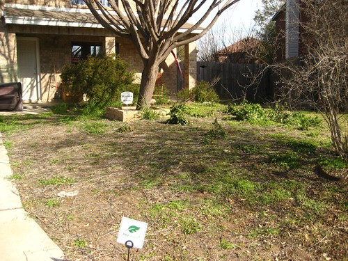 Our Crap Lawn