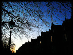 Daily iPhone Image Day 27 (RStreetUK) Tags: blue trees sunset sky urban scotland shadows terrace dusk lamppost aberdeen iphone rubislaw iphone365