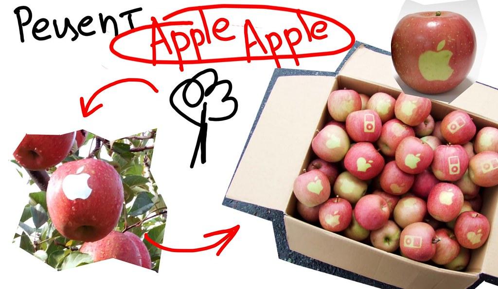Выращивание яблок в 82