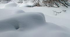Snow nude