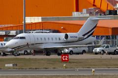 N555NN - 5718 - Private - Canadair CL-600-2B16 Challenger 605 - Luton - 100303 - Steven Gray - IMG_7735