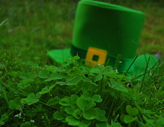Shamrocks, Leprechauns, and Shillelaghs (076/365)