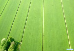 Italian countryside, aerial photograph - by adrian, acediscovery
