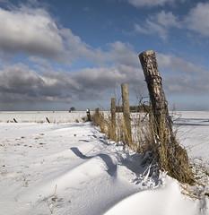 Winter has ended...please let summer arrive soon...! (Dani℮l) Tags: snow holland landscape daniel nederland groningen dollard d300 nieuwestatenzijl drieborg winterhasendedpleaseletsummerarrivesoon