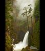 Metlako Falls (Jesse Estes) Tags: autumn fog columbiarivergorge eaglecreek metlakofalls 5d2 jesseestesphotography