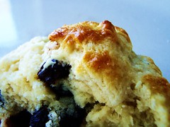 21 - english cream raisin scones