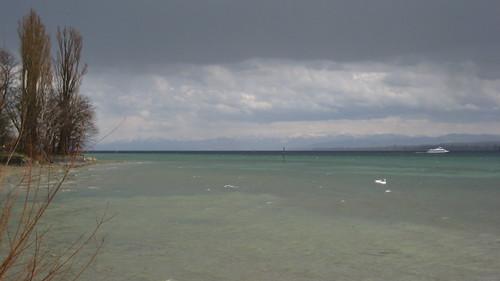 blau-grün-türkis-grauer Bodensee