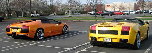 Lamborghinis back view