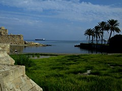 Beauty of  Palmfringed Mediterranean  seen from the Coast at  Saida, Lebanon - by -RejiK