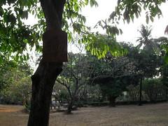 HWfri201037