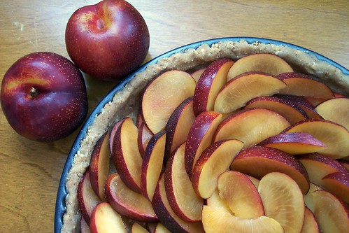 Plum Tart - ready for the topping