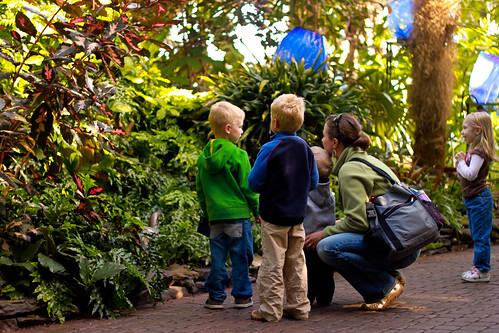 meijer gardens 028