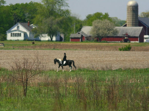 Pony and Farm 2-20100428