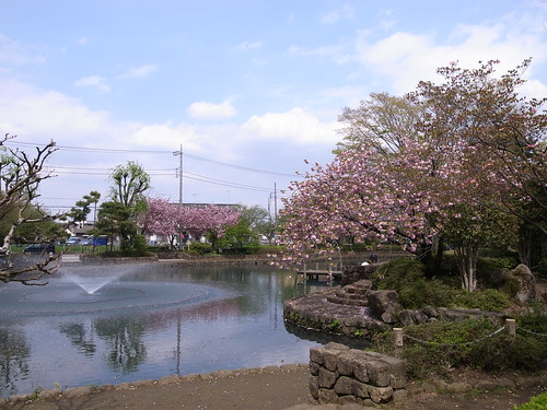 2010/04/30