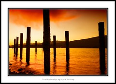 Sunset / Pilings / Burnaby Barnet Marine / Burnaby / Water / Ocean / Cloud / Orange / Silhouette / Kyle Bailey (Kyle Bailey - Da Big Cheeze) Tags: inspiration reflection water silhouette vancouver canon eos professional inspire barnetmarinepark sigma1022mm 40d mywinners kylebailey rookiephoto dabigcheeze wwwrookiephotocom
