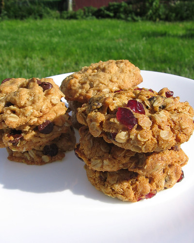 oatmeal cookie assortment