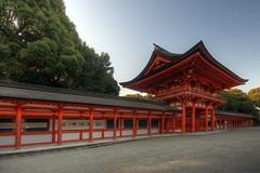 Kyoto - Shimogamo Jinja