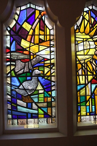 dodo stained glass