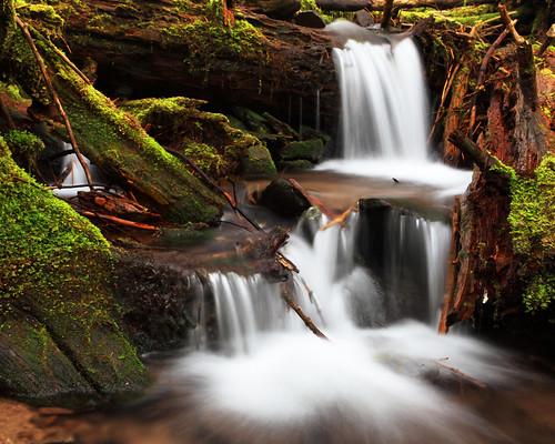 [フリー画像] 自然・風景, 川・河川, 滝, アメリカ合衆国, オレゴン州, 201005220700