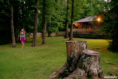 (151/365) (Kylie Lanae) Tags: old trees tree forest cabin days trunk 365 searching photosbyky