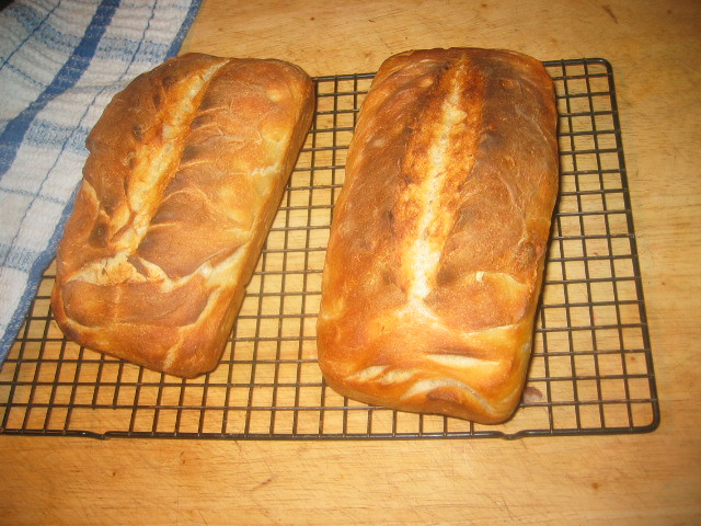 Two loaves of sour dough bread - mother made day before