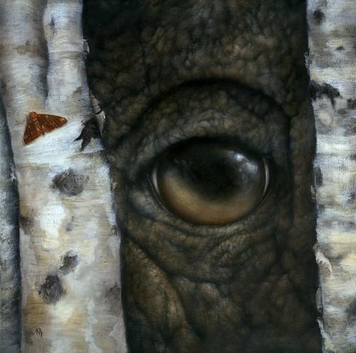 Between You and Eye