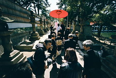 wedding procession (4) (troutfactory) Tags: wedding red film japan shrine shadows traditional voigtlander rangefinder wideangle parasol   osaka analogue procession superia400 shinto kansai 15mm bessal  heliar sumiyoshitaisha