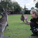 Hello Mr. Kangaroo!