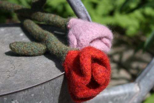 huovutetut ruusut