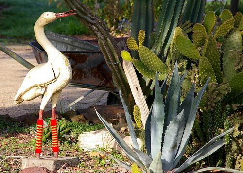 the stork all set for winter