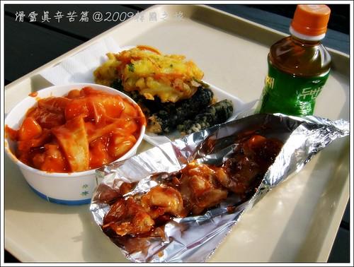 唐妮可☆吃喝玩樂過生活 拍攝的 20091224_滑雪真辛苦篇19。