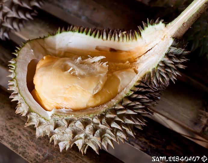 2010.06.19 Bao Seng Durian Buffet @ Penang-9