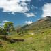 Eastern Affric Munros