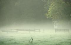 Oud Zuilen (Harry Mijland) Tags: mist holland fog gate utrecht nederland hek maarssen oudzuilen dearharry harrymijland