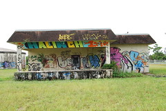 Abandoned (Stalkin The Lines) Tags: street plant streetart building art abandoned water graffiti paint florida decay tag westpalmbeach tags spray fl spraypaint graff palmbeach abandonment southflorida
