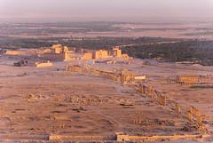 Palmyra Old City (sillie_R) Tags: old city sunset ruin syria palmyra