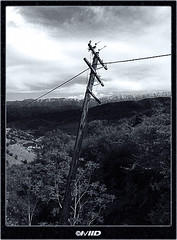To be or not to be! (I\/IID) Tags: life mountains death wire woods iran being pole powerlines string mazandaran