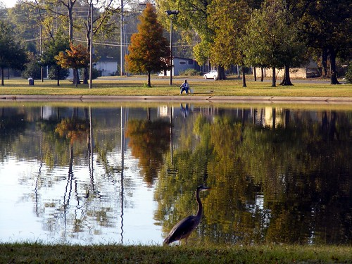 Across the lake at W.C. Patton Park. acnatta/Flickr