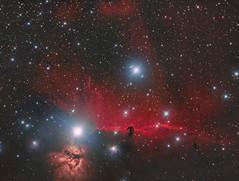 Horsehead Nebula (Simon__W) Tags: horseheadnebula barnard 33 asi zwo 1600 takahashi space nebula alnitak universe astrophotography astro