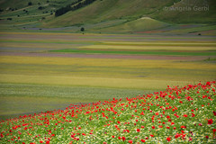 Castelluccio di Norcia (angela stella 67) Tags: castelluccio norcia umbria italia italy paesaggio landscape cuore terremoto castellucciodinorcia
