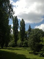 2017-06-11-9656 (vale 83) Tags: public garden pančevo serbia nokia n8 friends coloursplosion beautifulexpression photopedia autofocus