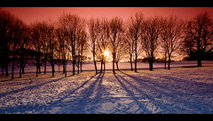 treeline II ... (John FotoHouse) Tags: uk trees sunset red snow colour nature canon eos europe flickr yorkshire wide leeds parks sigma filter 2009 johndolan westyorkshire christmasday whiterose xmasday dolan kood 40d leedsflickrgroup eastleeds leedsflickr hometourism johnfotohouse yorkshirephotographer templenewsamestate copyrightjdolan