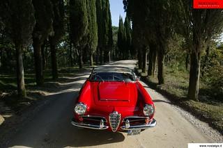 Giulia Spider 1600 (11)