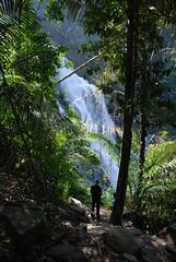 Meenmutty Falls, Wayanad (Mad2PhoFreak) Tags: new lake coffee tea year kerala newyear falls caves waterfalls wayanad 2010 meenmutty soochipara pookode edakal