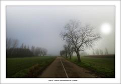 Carretera secundaria II (Ariasgonzalo) Tags: paisajes landscapes rboles niebla hdr zamora carreteras flickrestrellas