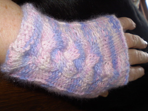 Eve's Mitts