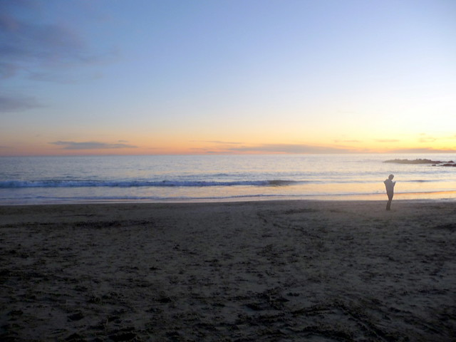 Patrick Nouhailler visiting Laguna Beach 1-3-2010 12-05-06 PM